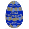 Morning After 1994 Jungle Eggsperience