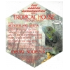 Tropical House Image 2