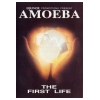 Amoeba The First Life