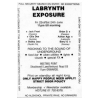 Labrynth 1989 Exposure Image 2