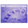 Metamorphosis 1991 June