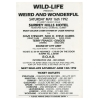 Wild Life 1992 Weird & Wonderful Image 2